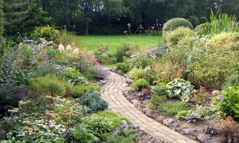 Kleinere tuin in de aa landen   harry pierik tuinontwerp