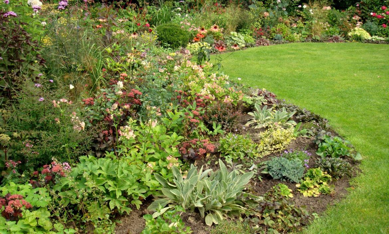Tuin aan een bosrand in dalfsen harry pierik tuinontwerp - Maak een eigentijdse tuin aan ...