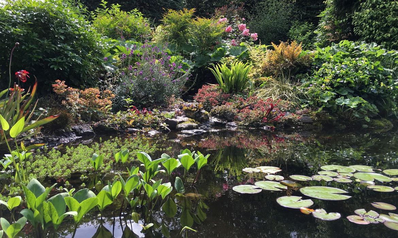 Rondom een vijver harry pierik tuinontwerp for Een vijver