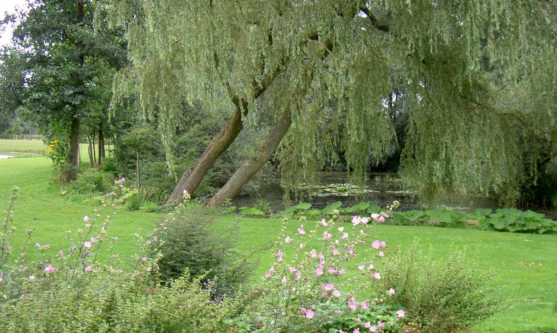 Landelijke tuin met twee grote vijvers harry pierik for Vijverpomp voor grote vijver