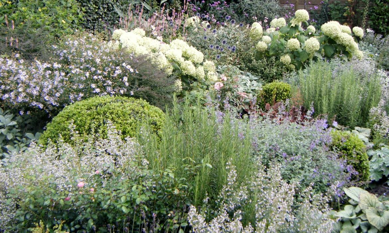 Zilvergrijze tuin   harry pierik tuinontwerp