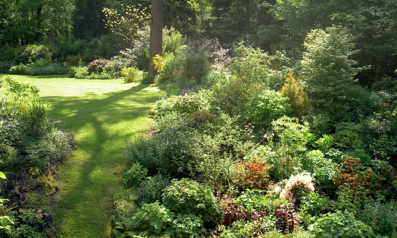 Bostuin in de buurt van hattem harry pierik tuinontwerp