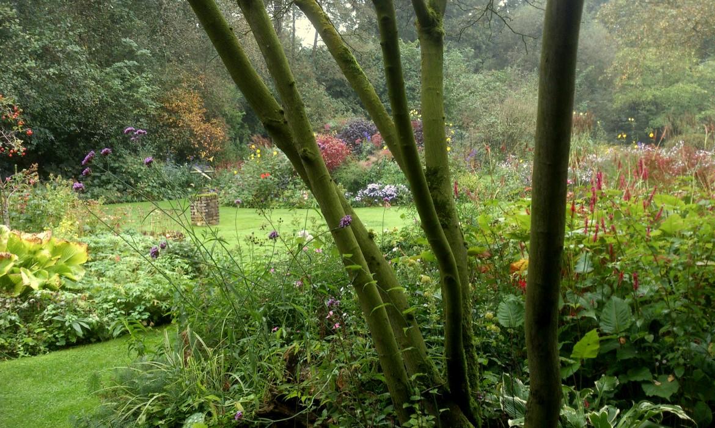 De sallandse landschapstuin harry pierik tuinontwerp